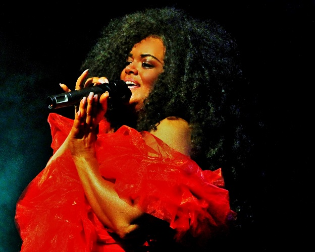 Diana Ross tribute act