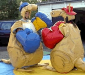kangaroo_boxing_small.jpg